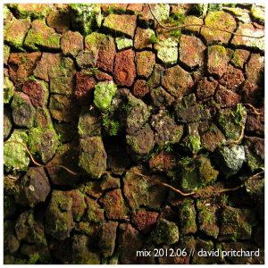 album cover - moss on wood